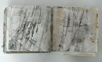 DSCN4959 copy 2