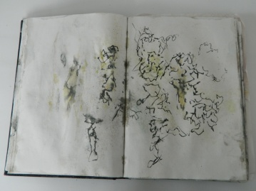 DSCN4972 copy 2