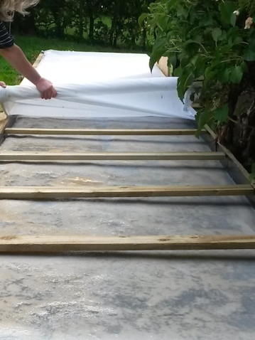 9 mtr Kombucha being uncovered