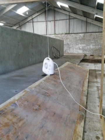 Drying of 9mtr Kombucha